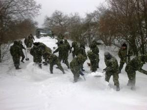Armata zapada (MApN)