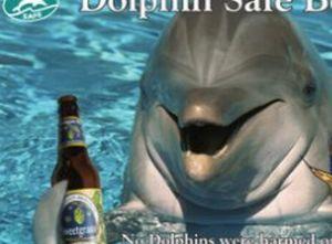 Delfin bere
