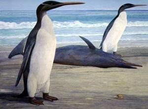Kairuku pinguin urias
