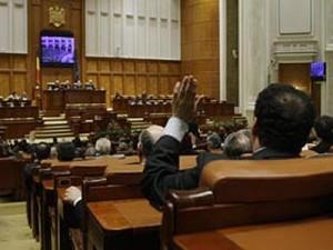 Deputaţii au votat proiectul de lege privind câinii fără stăpân