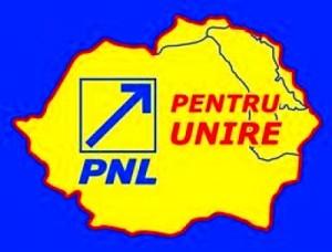 Chişinău: Unirea cu România, în statutul PNL