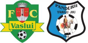 FC Vaslui - Pandurii Târgu Jiu