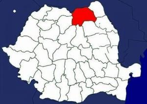 Alegeri 2012 - Rezultate Suceava