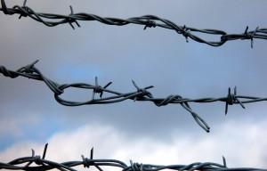 Sârmă ghimpată de 16.000 de lei la Cotroceni. Ce spune Preşedinţia