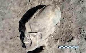 Ca extratereştrii. Cranii alungite, în Mexic