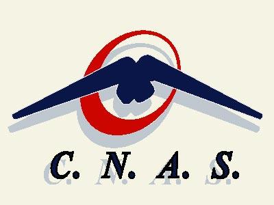 CNAS acuză Administraţia Prezidenţială de gafă mafiotă
