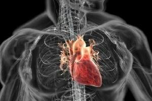 Autorizaţie de implantare a inimii bioproteice