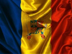 în legea fundamentală înscrierea stemei României pe tricolor