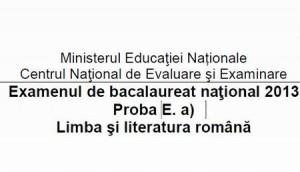 Barem BAC 2013 limba română