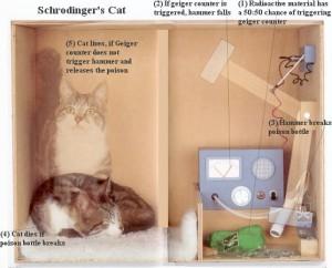 Pisica lui Erwin Schrödinger si fizica cuantica