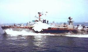MApN cumpara torpile antisubmarin