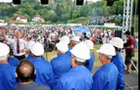 Zeci de primari din Apuseni susţin exploatarea de la Roşia Montană