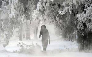 iarna ger frig