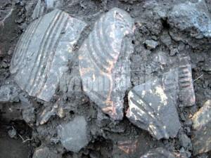 Suceava. Universitatea Cambridge interesată de o locuinţă pre-Cucuteni din 5200-5100 Î.Hr.