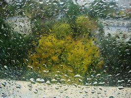 ANM: Cod galben de ploi grindină şi vijelii