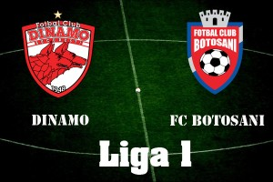 Liga I, etapa 17: Dinamo - FC Botoșani, scor 1-0