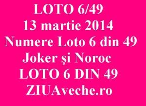 LOTO 6/49, 13 martie 2014. Numere Loto 6 din 49, Joker şi Noroc sport