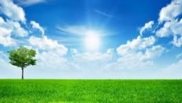 Vremea se încălzeşte, în ţară şi în Bucureşti