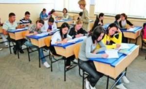 Bacalaureat 2014: Subiecte și bareme la proba la alegere.