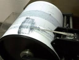 INFP: seism produs ȋn zona Vrancea