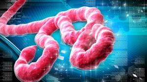 Suspiciune de Ebola în Capitală.