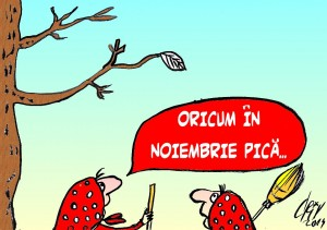 IN NOIEMBRIE PICA