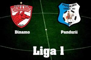 Liga I, etapa 12. Dinamo - Pandurii Tg. Jiu