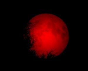 """Eclipsǎ totalǎ de Lunǎ. """"Lunǎ sȃngerie"""" pe cerul Canadei și SUA ȋn 8 octombrie (foto: welshstream.wordpress.com)"""