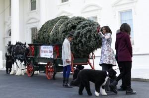 Michelle Obama si bradul de craciun