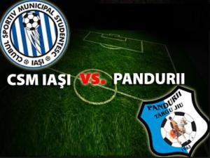Liga I, etapa 16: CSMS Iași - Pandurii Târgu Jiu (live video)