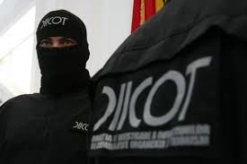 DIICOT: Peste 40 de percheziții într-un caz de evaziune fiscală