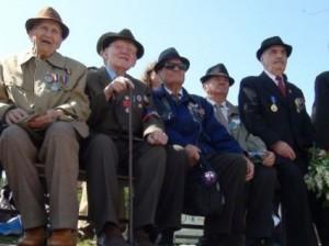 Ce ajutoare ar putea primi veteranii și văduvele de război