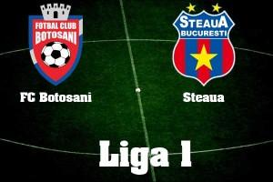 Liga 1, etapa 16. FC Botosani - Steaua