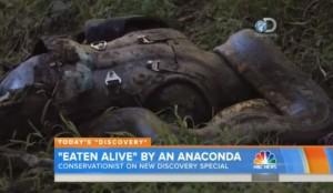S-a lăsat înghiţit de viu de un anaconda