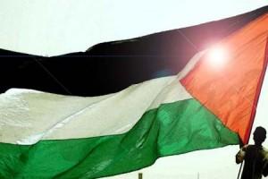Reacția SUA la decizia Adunării Naţionale din Franței de a recunoaște Palestina (foto:presstv.fr)