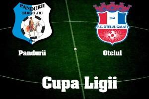 Cupa Ligii, sferturi de finală: Pandurii Tg. Jiu - Oțelul Galați (live video)