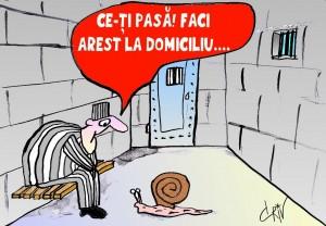AREST LA DOMICILIU
