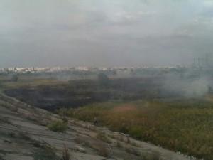 delta vacaresti incendiu
