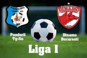 Liga I, etapa 29. Pandurii - Dinamo