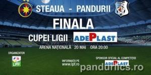 Cupa Ligii. Steaua - Pandurii