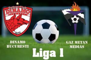 Liga I, etapa 32. Dinamo - Gaz Metan