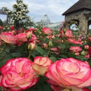 Lewis Ginter Botanical Garden (Foto: Lewis Ginter)
