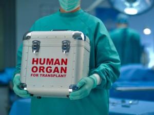 Transplant-