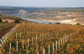 misiune economica viticola in bavaria