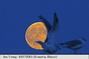 super luna3