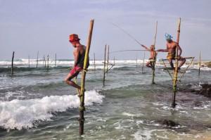 la pescuit in Sri Lanka