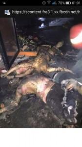 EXPLOZIE în Clubul Colectiv din Bucureşti. Peste 25 de morţi şi aproape 200 de răniţi investigatii