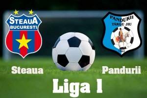 Liga I, etapa 15. Steaua - Pandurii