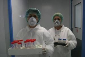 gripa porcina mort bucuresti