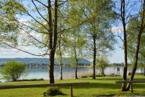 Lacul Staffelsee